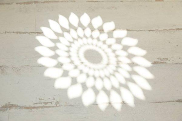 spa-woodbridge-logo-light